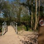 Centenary Walk, Commons Wood by Rachel Dunsdon
