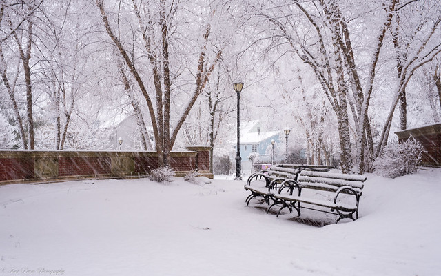 Come sit with me and keep me company in the cold the bench calls out to me?