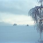 Swiss Blue  (Retina IIIC / Portra 400)