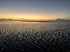 2020-November-Jekyll-Island