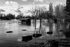 La cabane les pieds dans l'eau