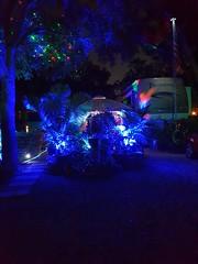 RVPark Holiday Lights