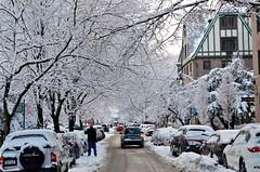 Dartmouth Street In The Snow