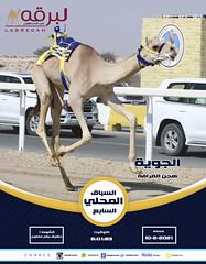 سباق الحقايق (أشواط مفتوحة) بالمحلي السابع ١٠-٢-٢٠٢١