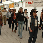 Country_2009_3