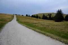 Plateau du Semnoz