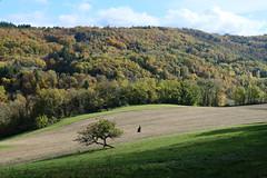 Montagne d'Âge @ Bois de Loye @ Nonglard