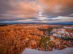 Bryce Canyon National Park Winter Fuji GFX100 Utah Fine Art Landscape Photography! Elliot McGucken Fine Art American West Landscape Nature Photography! Master Medium Format Fine Art Photographer! Fujifilm GFX 100 & Fujifilm FUJINON GF Lens