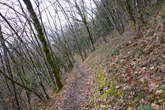 Sentier sous les Rochers des Moillats
