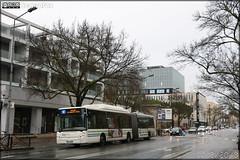 Irisbus Citélis  18 CNG – Keolis Bordeaux Métropole / TBM (Transports Bordeaux Métropole) n°2602