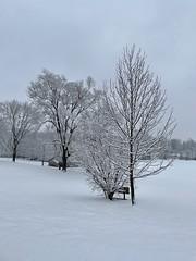 Winter weather hits Shepherstown
