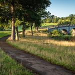 Pathway to the Palladian bridge, Brocket Park by Iain Houston