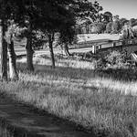 Pathway to the Paine bridge, Brocket Park by Iain Houston