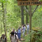 Sentier_Nature_21