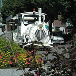 Train_Touristique_2009_7