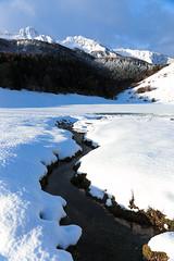 L'arriou Tort - plateau du Bénou sous la neige (64)