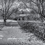 Singlers Marsh Welwyn by Richard White
