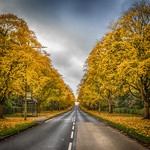 Digswell Road WGC in Autumn by Richard White