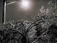Night Ice - Stree Light Shiny