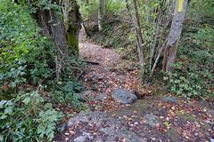 Ruisseau de Tabassé à sec @ Cercier