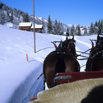 Sleigh ride Gstaad  (Rollei 35SE / Ektachrome)