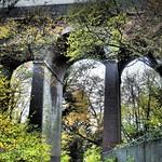 Viaduct over Robbery Bottom lane Oaklands by Richard Goldthorpe