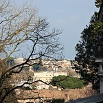 Panorama dal Gianicolo - https://www.flickr.com/people/82911286@N03/
