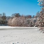 Stanborough Lakes frozen_1 Martin Burrage by Martin Burrage