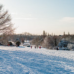 Sanborough Park after snow Martin Burrage by Martin Burrage