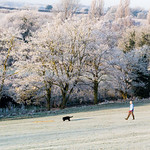 Stanborough Park Frosty Morning Martin Burrage by Martin Burrage