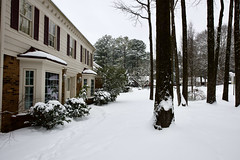 Front yard snow Feb 20 21