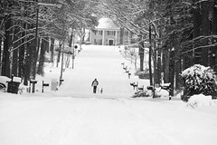 Snowy Street Feb 20 21
