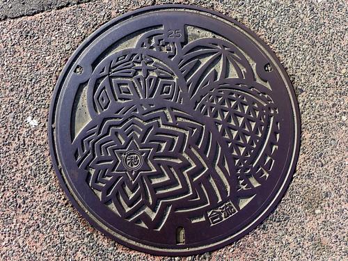 Wakayama city Wakayama pref, manhole cover (和歌山県和歌山市のマンホール7)