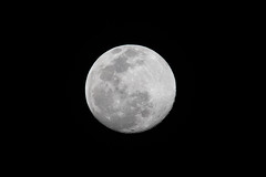 Almost Full February Moon