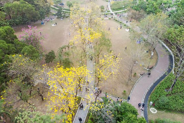 Nam Cheong Park.