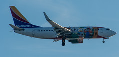 Southwest Airlines - Florida One - Boeing 737-7H4