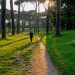 La passeggiata - https://www.flickr.com/people/134205948@N02/