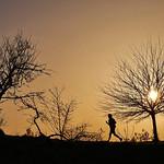 La corsa della sera (the evening run) - https://www.flickr.com/people/33263538@N06/