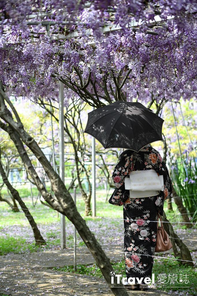 紫藤咖啡園 Damshui Wisteria (21)