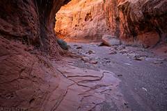 Upper - Lower Muley Twist Canyon (2-28-21)