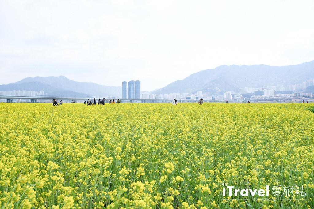 大渚生態公園 Daejeo Ecological Park (23)