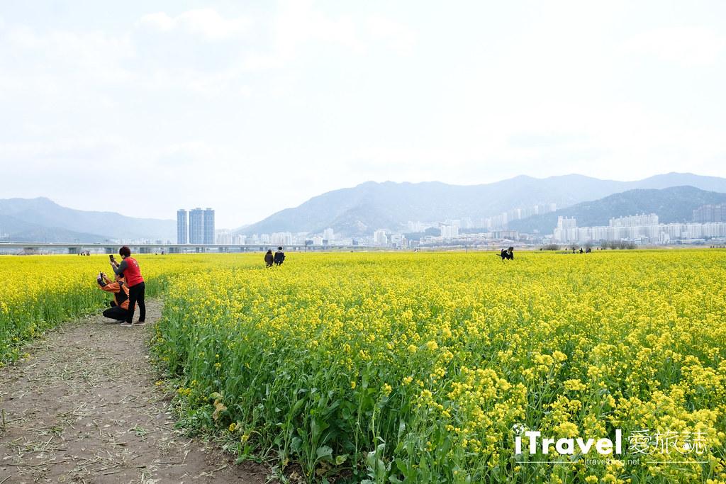 大渚生態公園 Daejeo Ecological Park (12)