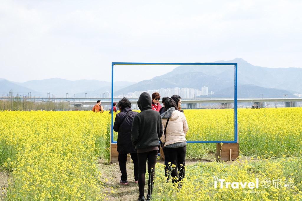 大渚生態公園 Daejeo Ecological Park (10)