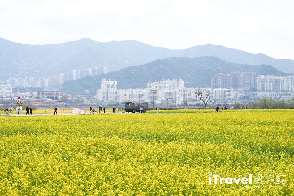 大渚生態公園 Daejeo Ecological Park (7)