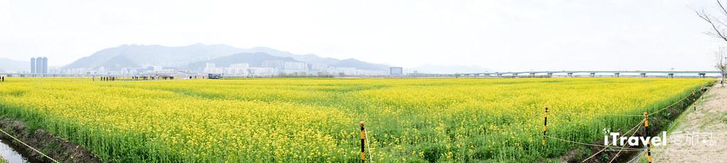 大渚生態公園 Daejeo Ecological Park (4)