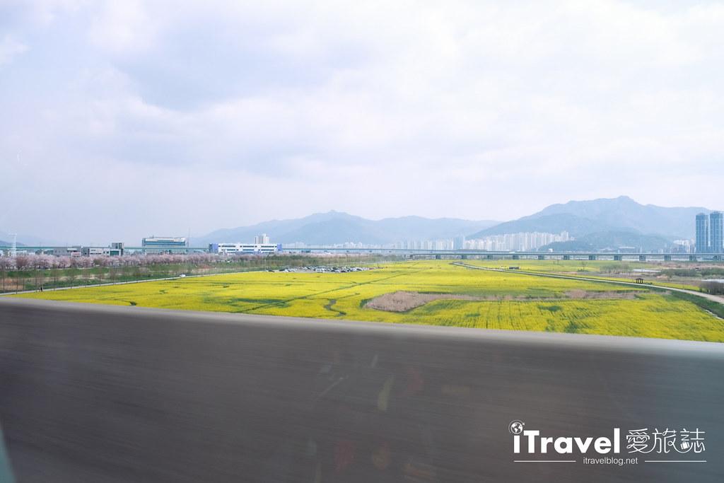 大渚生態公園 Daejeo Ecological Park (2)