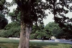 Arlington National Cemetery = 1984