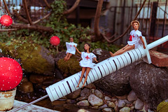 2021.03.04 The Barbie Pond on Avenue Q, Washington, DC USA 063 17027-Edit