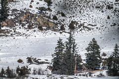 Distant Wolfpack Yellowstone National Park Winter Wildlife Sony A7R4 Montana Fine Art Landscape Nature Wildlife Photography! Elliot McGucken Fine Art American West Photos! Sony A7R 4 & Sony FE 200-600mm f/5.6-6.3 G OSS Lens 2x Teleconverter Lens SEL20TC