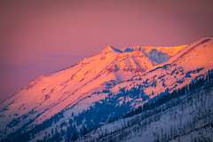 Yellowstone National Park Winter Sunrise Pink Clouds Sony A7R4 Montana Fine Art Landscape Nature Wildlife Photography! Elliot McGucken Fine Art American West Photography! Sony A7R 4 & Sony FE 200-600mm f/5.6-6.3 G OSS Lens 1.4x Teleconverter Lens SEL14TC